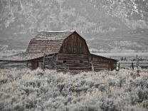 Old Barn - Grand Tetons
